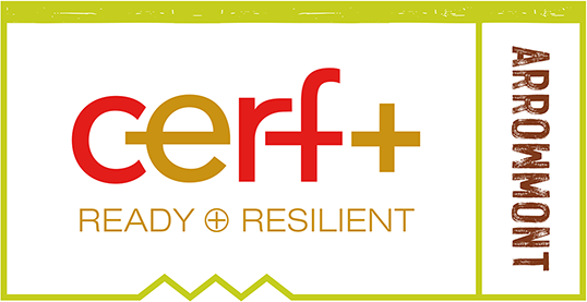 cerf+ ready+resilient